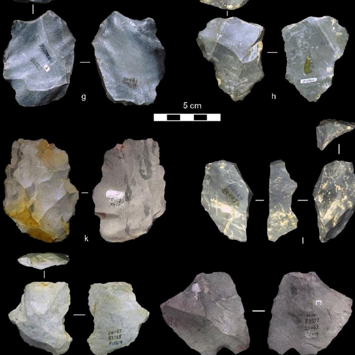 Among the 45 stone tools deemed to reflect the Levallois technique of toolmaking in China, tens of thousands of years earlier than the technology had been thought to have reached Asia