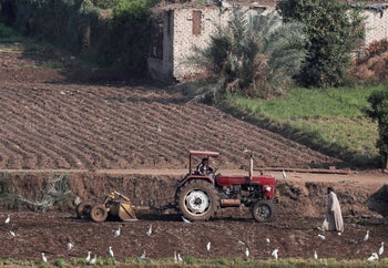 A farmer works at his field next to his family home on an island on the River Nile, near Cairo, Egypt, November 25, 2018. Picture taken November 25, 2018.