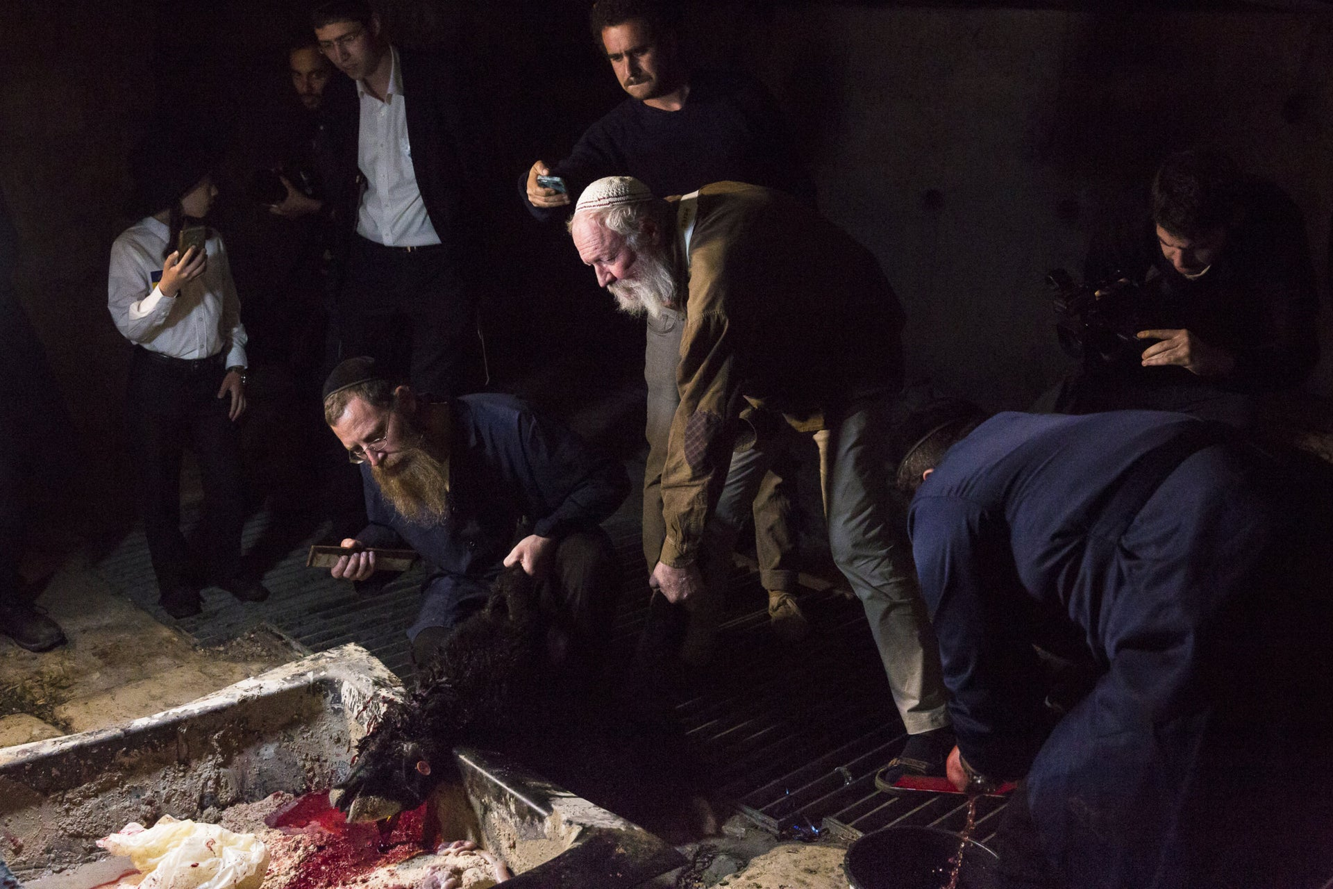 Members of the Temple Movement slaughter a lamb.