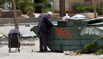 Searching for food in a dumpster in Yeruham