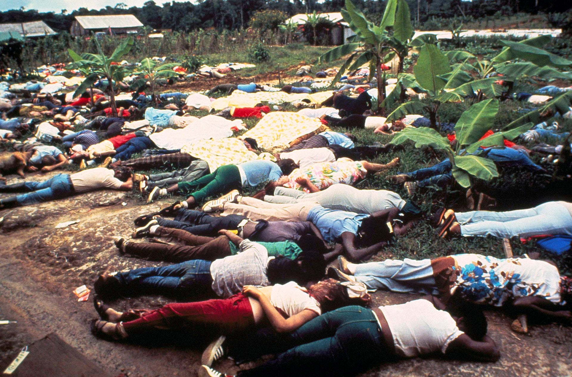File photo: Bodies of Peoples Temple mass suicide victims led by Jim Jones in Jonestown, Guyana, November 1978.