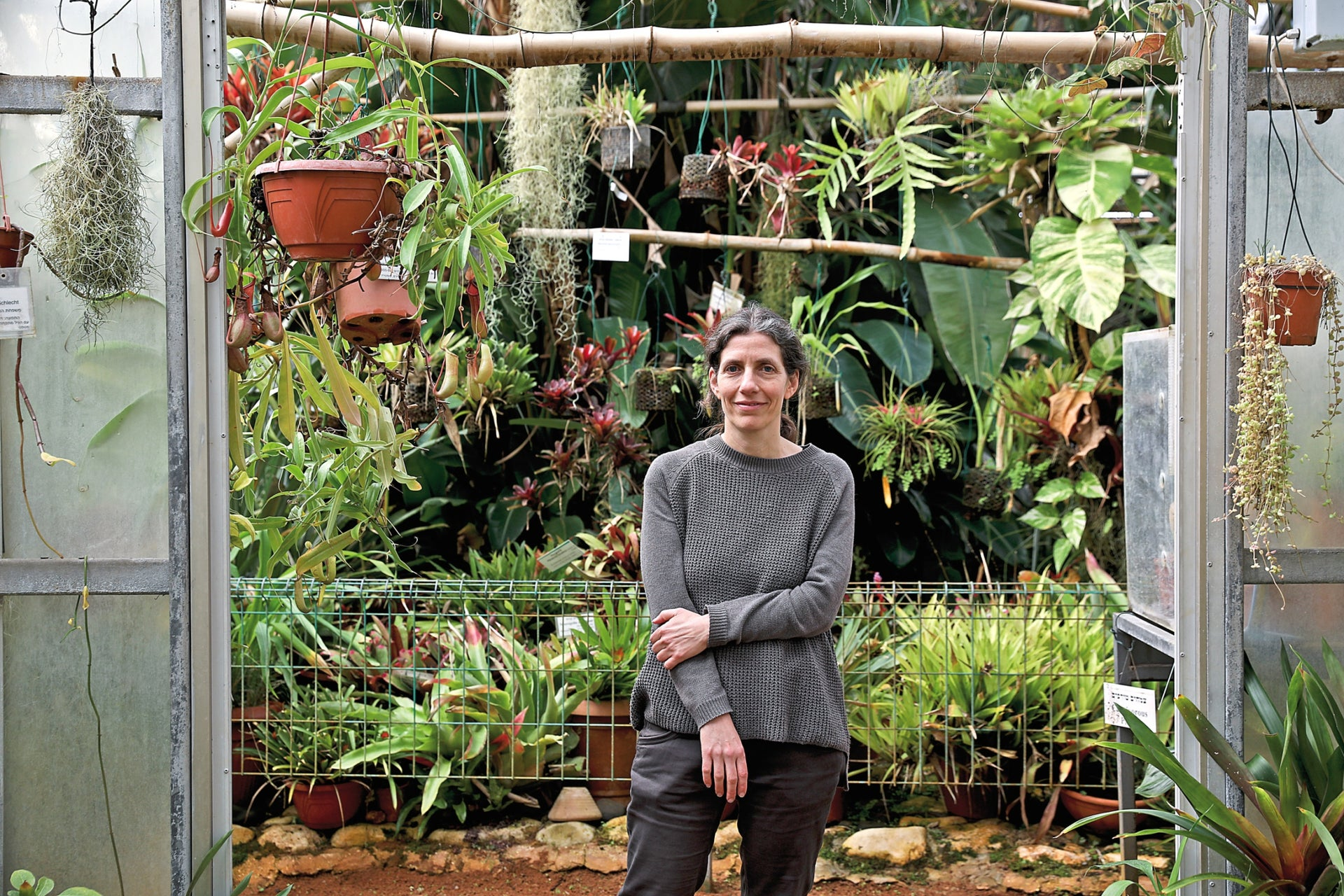 Prof. Lilach Hadany, from Tel Aviv University's Department of Molecular Biology and Ecology of Plants.