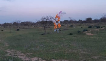 Incendiary balloons flown from Gaza into Israel, in the Eshkol regional council in southern Israel, on February 20, 2019.