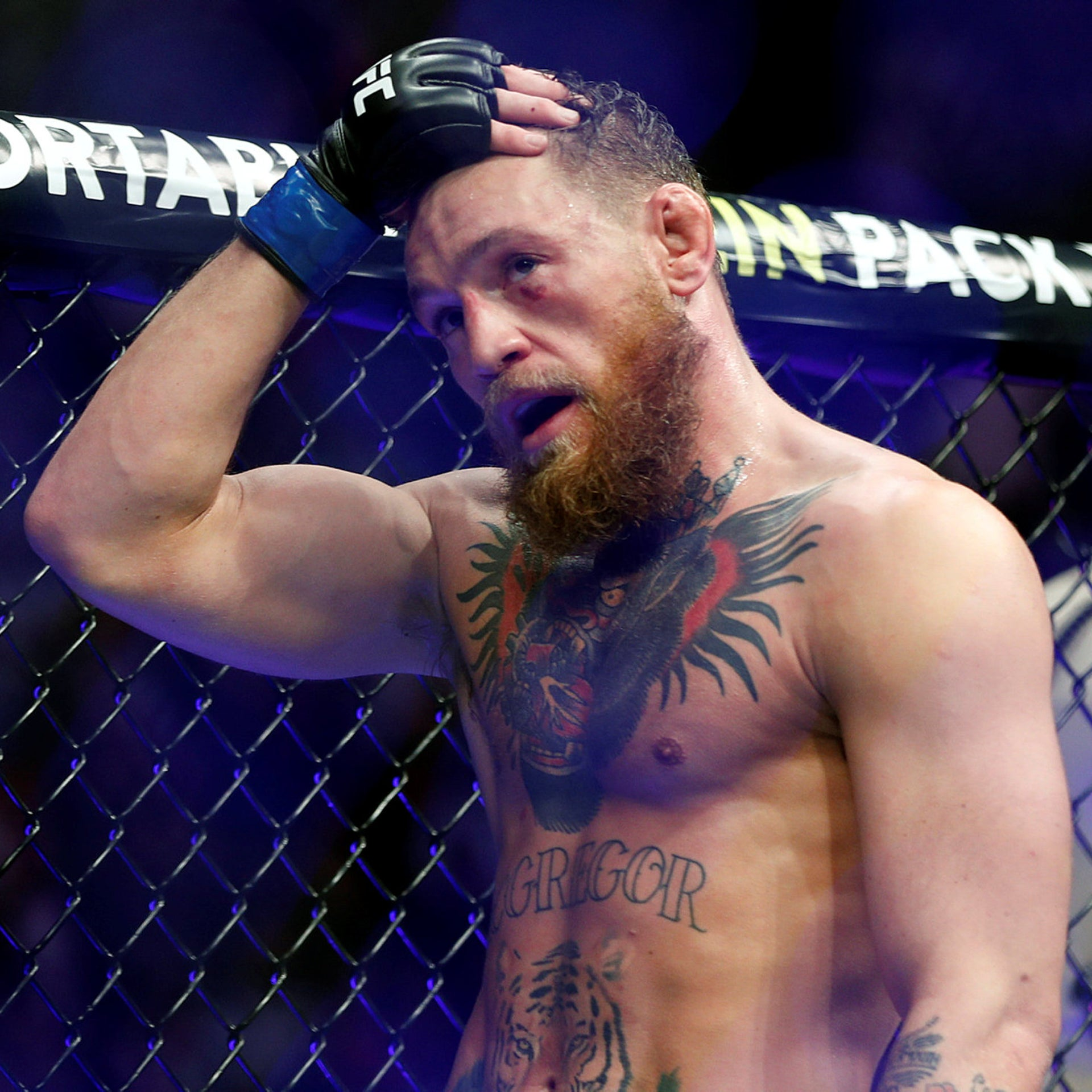Conor McGregor. 'You look at him and you see that he's either coming to kill someone or he's coming to die.'
