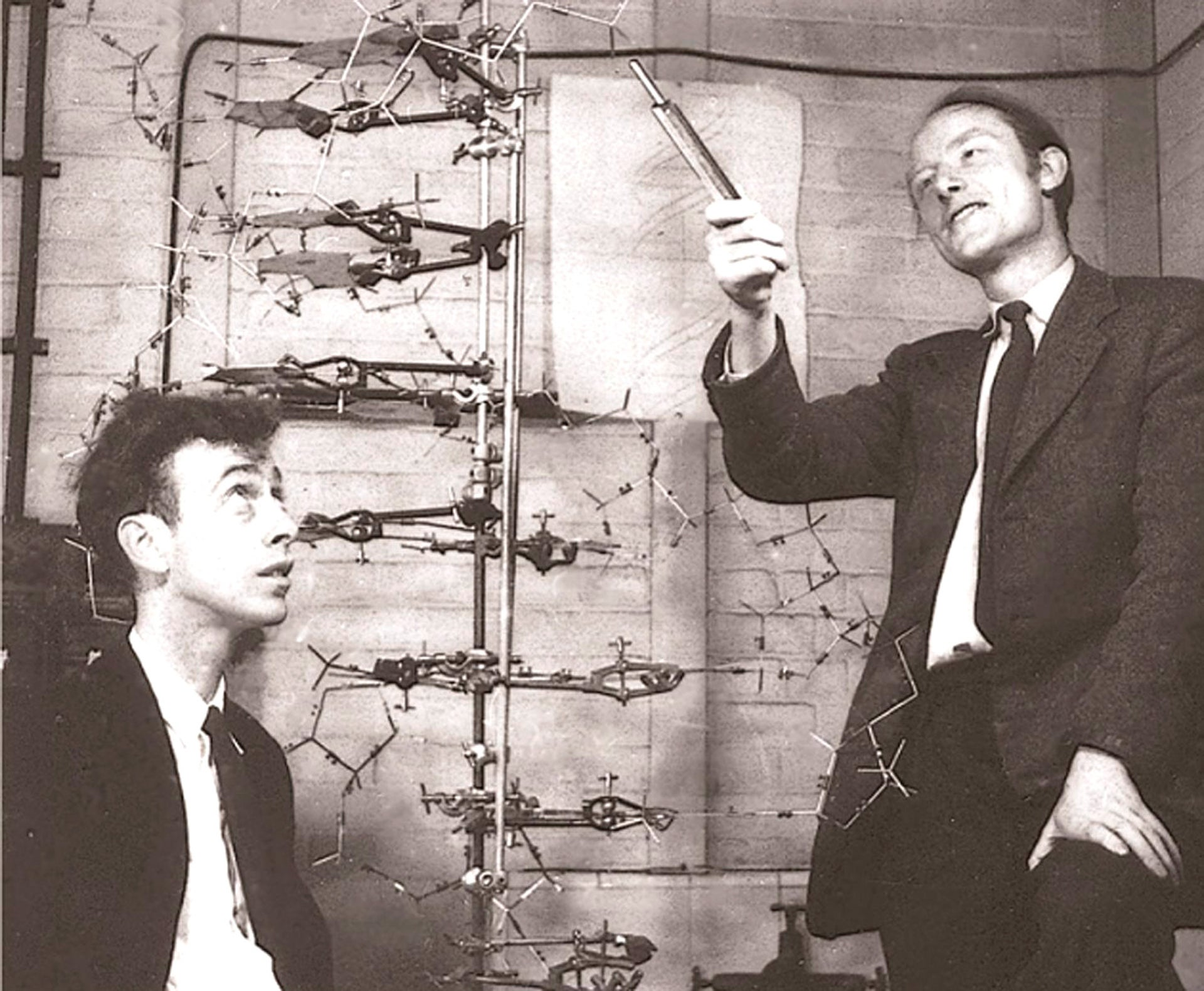 James D. Watson and Francis Crick, co-discoverers of the structure and function of DNA, seen here in a photo taken circa 1953.