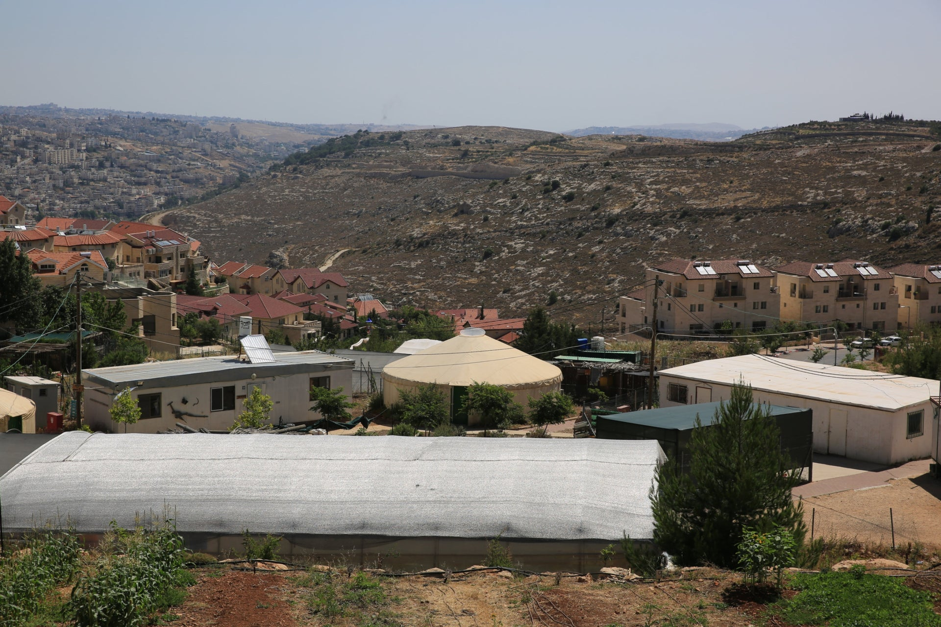 A farm in the West Bank settlement of Efrat. Good luck finding a left-wing voter here.