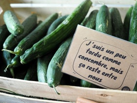 """Humor also sells misshapen products, like this sign reading """"I'm kind of freaky for a cucumber, but let's keep this between us""""."""