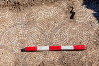 Mosaic floor found by the researchers at Susita, March 2019.