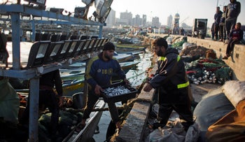 Palestinian fisherman unload their catch, Gaza Seaport, April 3, 2019.