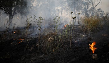 Fire in Kibbutz Harel, Israel, May 23, 2019.