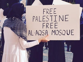 FILE Photo: A woman holds a sign during a pro-Palestinian rally in Chicago, 2015.