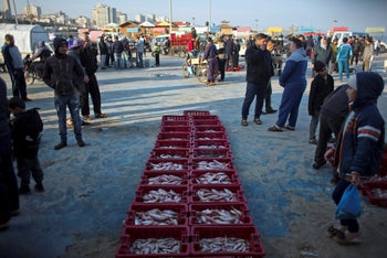 Palestinian fishermen display their catch for sale in the Gaza seaport, April 3, 2019.