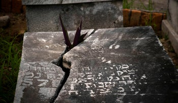 A plant protrudes through the lid of a tomb at the Jewish cemetery in Guanabacoa, eastern Havana, Cuba, June 12, 2019