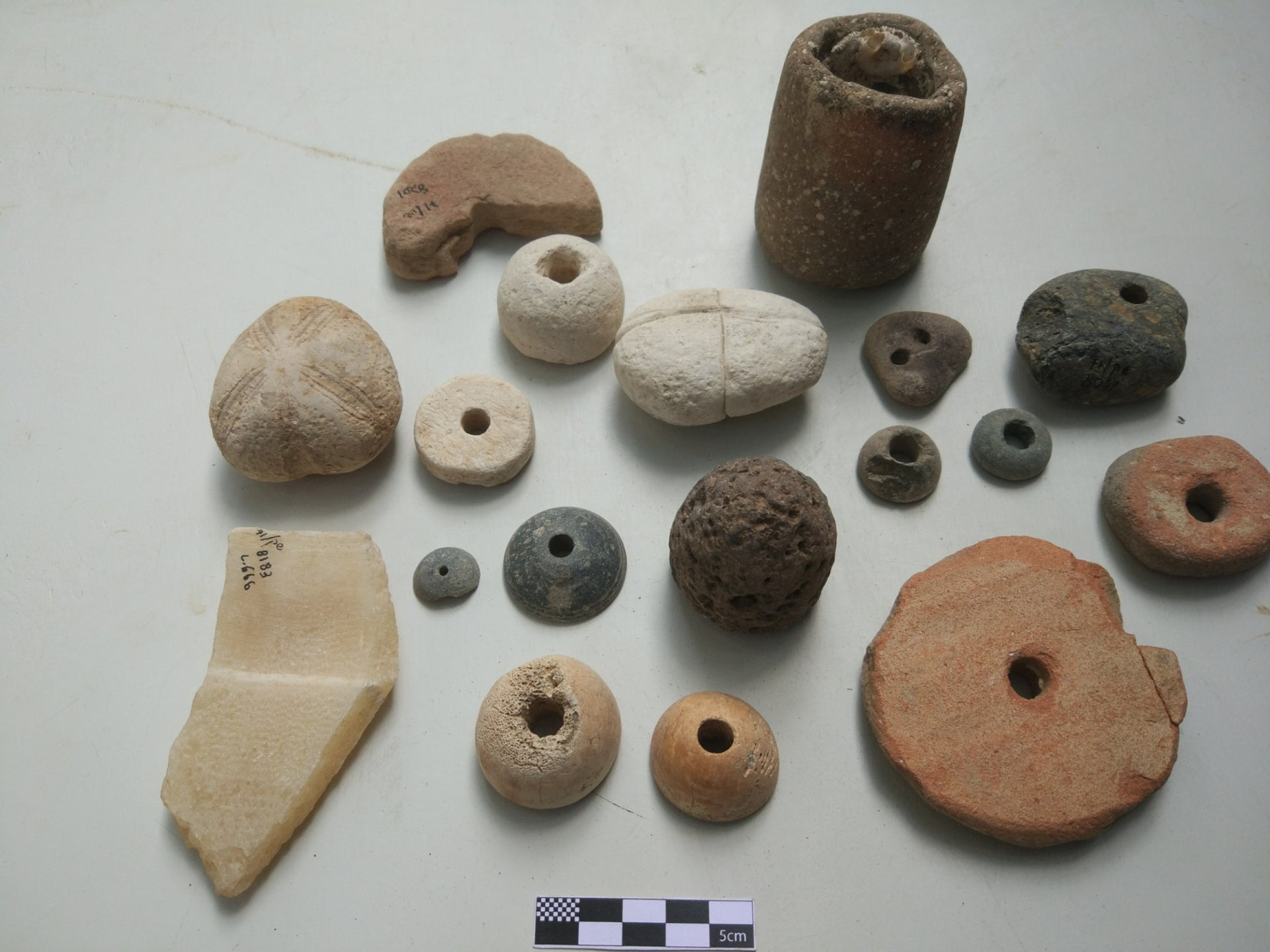 Weights found from the Temple period at Tell Shikmona