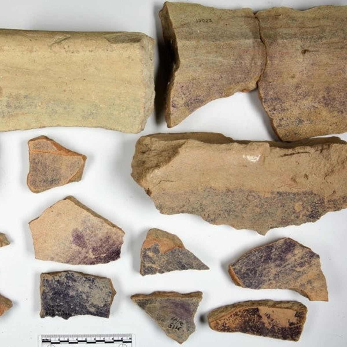 Stains of purple dye on fragments of pottery, found at Tell Shikmona