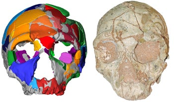 The Neanderthal skull found at Apidima and its reconstruction