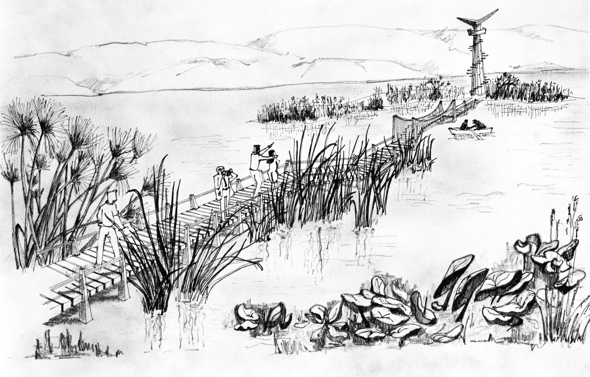 Drawing by Ruth Enis of the Hula nature reserve.