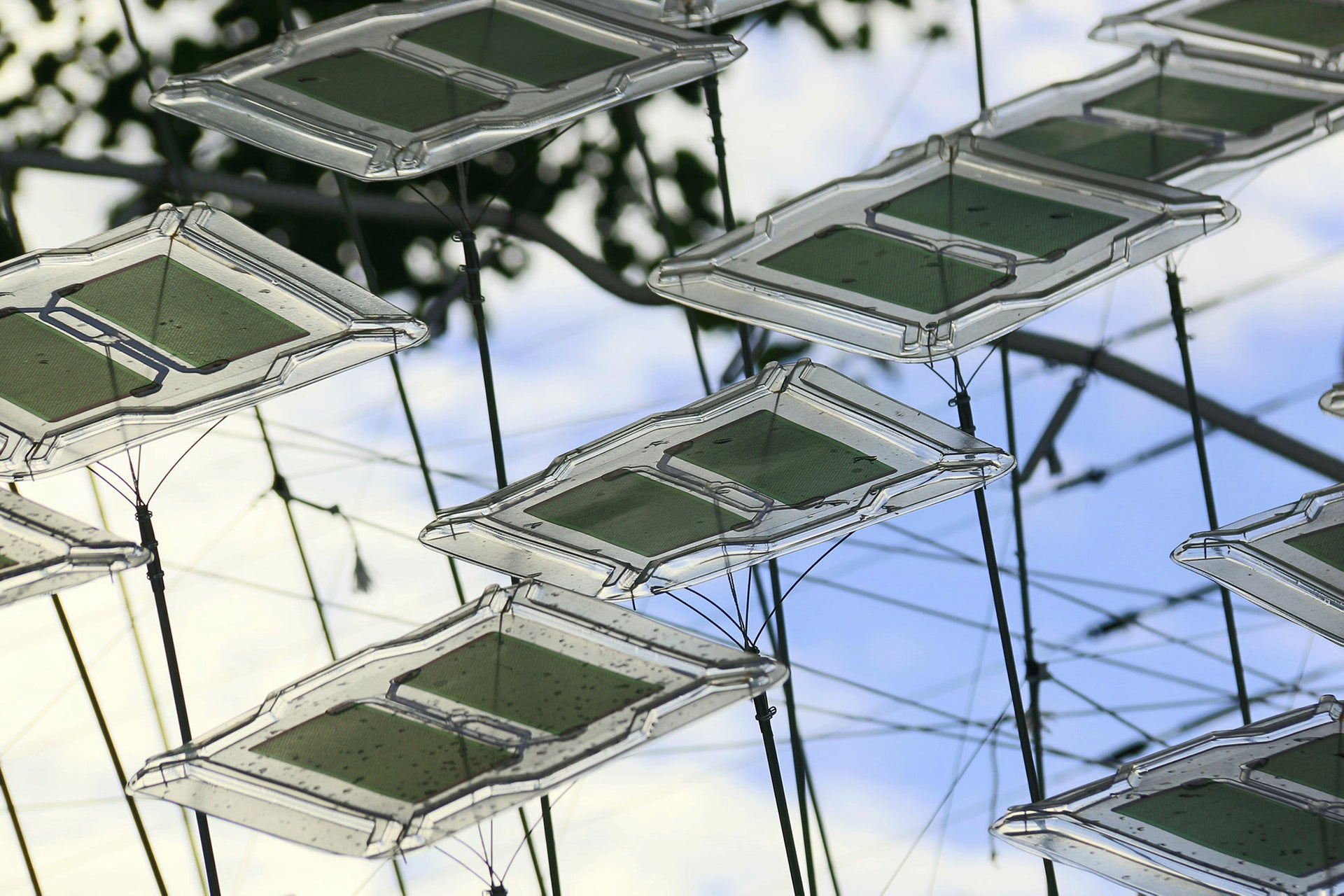 Individual solar cells of the 'Solar Spine.'