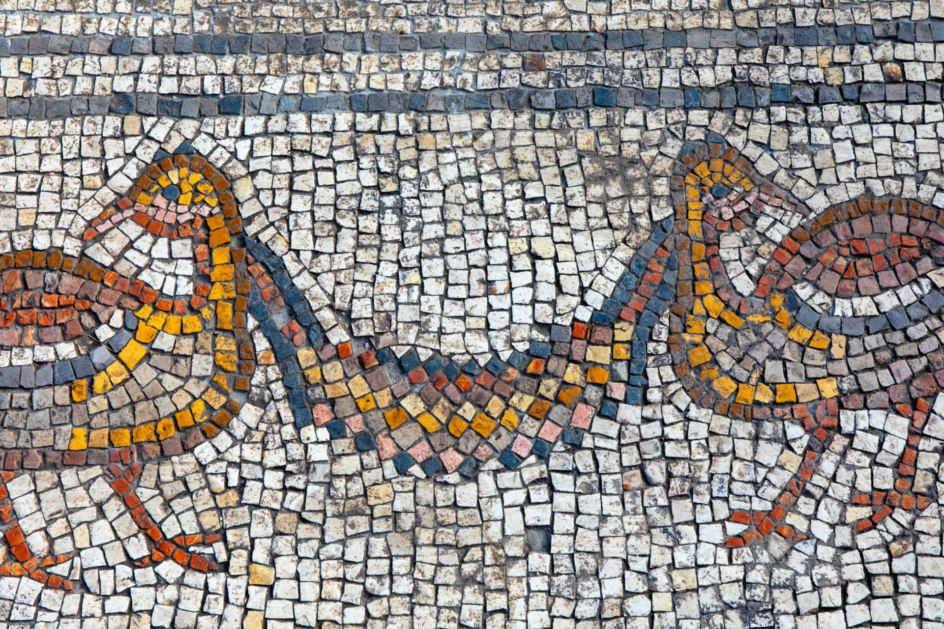 Birds in the mosaic carpet of the Burnt Church