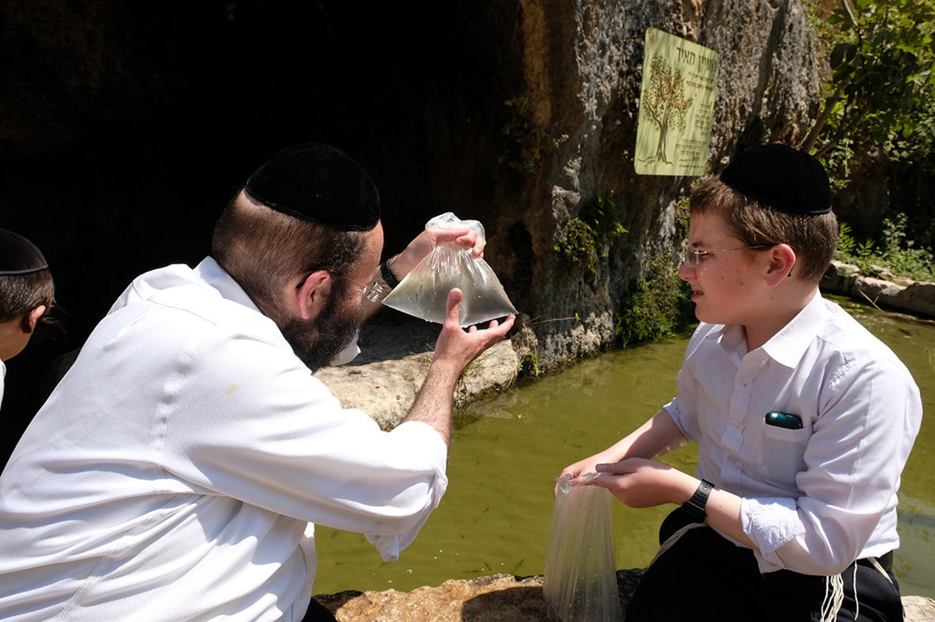 "Ein al-Qus spring, now also a Jewish ""convert"" that's been renamed Ma'ayan Meir."