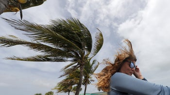 A woman watching the high surf from a boardwalk overlooking the Atlantic Ocean, as winds from Hurricane Dorian blow the fronds of a palm tree in Vero Beach, Florida, September 2, 2019.