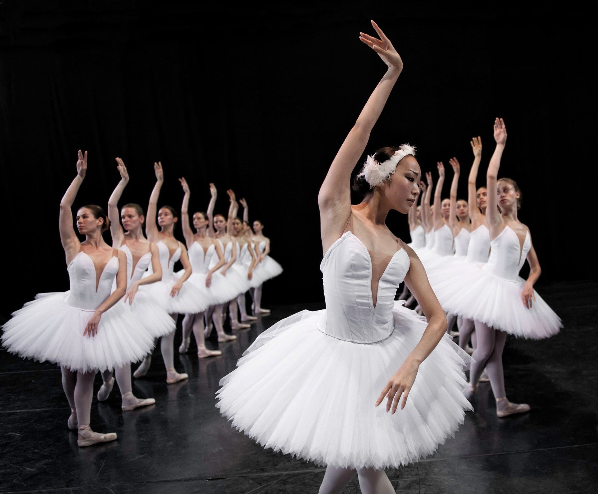 Why would it be far-fetched to wonder if hominins identified with birds? Israel Ballet performing Swan Lake