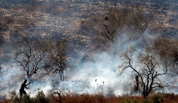 A Palestinian trying to extinguish a fire in an olive grove near the Palestinian village of Burin in the northern West Bank on October 16, 2019.