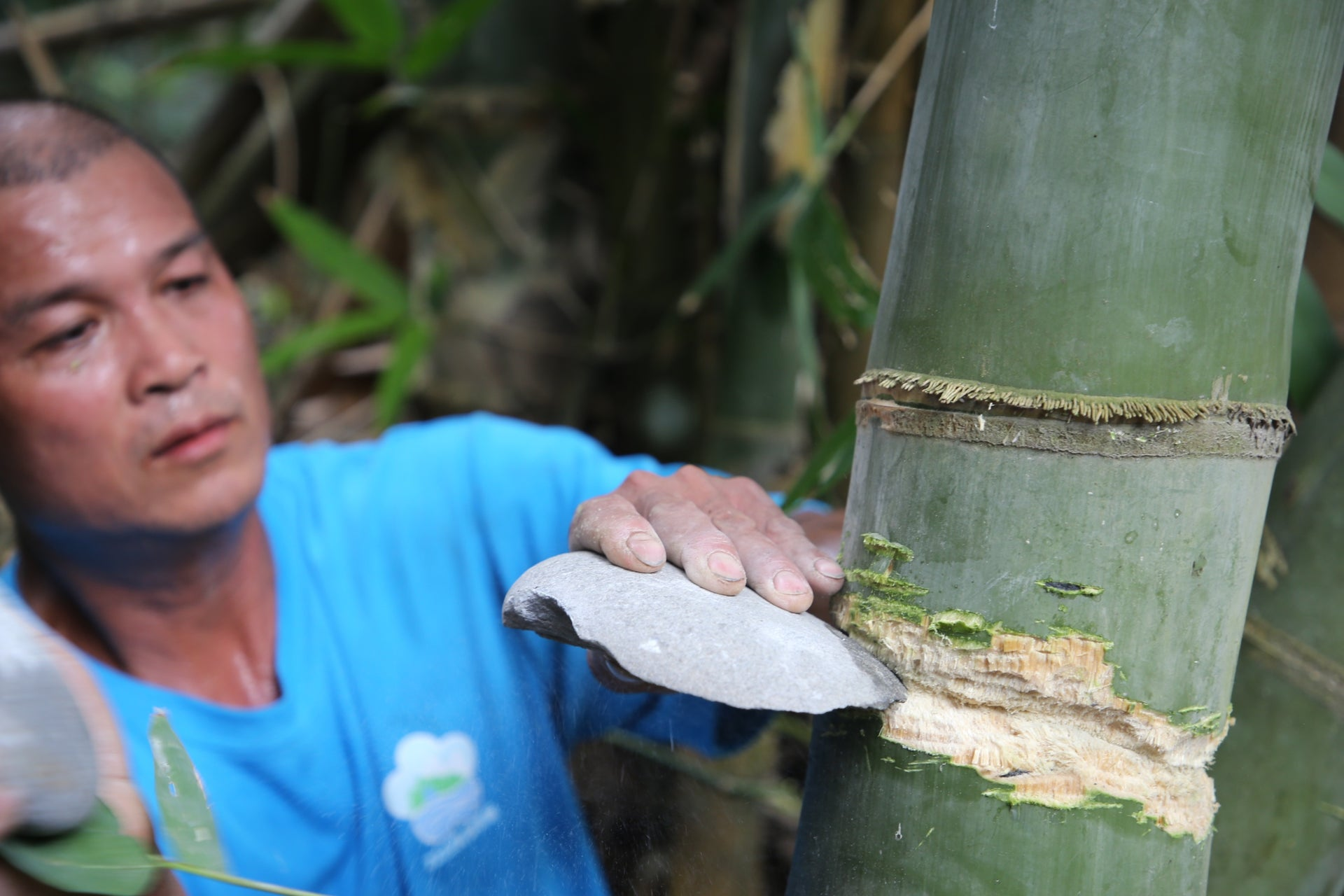 Cutting bamboo using stone tools to make rafts