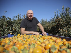 Farmer Eran Heilborn from Moshav Magshimim just north of Ben-Gurion Airport.