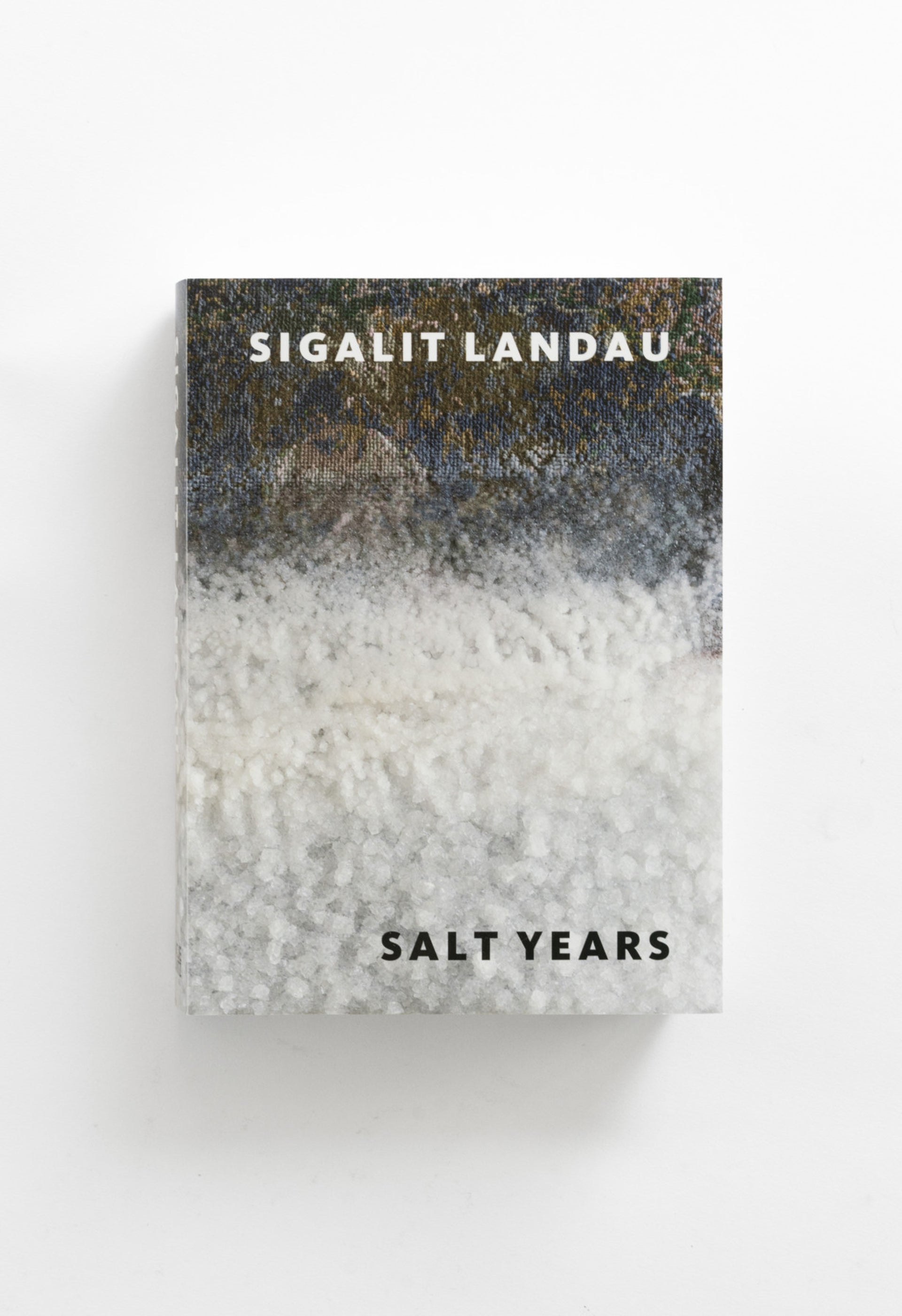"""Salt Years,"" by Sigalit Landau. ""I became addicted to the Dead Sea and the different things you can do with salt, like a junkie. It got out of hand."""