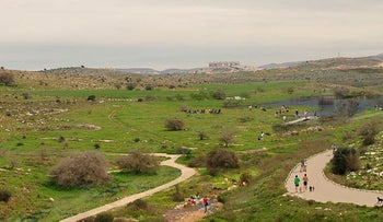 Open space west of the central Israeli city of Modi'in, March, 2019.