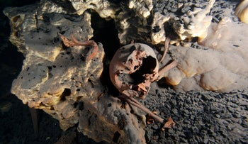 Original position of the skeletal remains inside submerged cave of Muknal