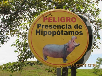 At Pablo Escobar's former hacienda, tourists are warned about the dangerous presence of an expanding hippo population.