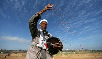 A Palestinian farmer, helped by the International Committee of the Red Cross (ICRC), throws wheat seeds as he plants a field near the Israel Gaza border in the central Gaza Strip, February 3, 2020.