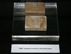 "Soap from Auschwitz, labeled with the initials ""RIF,"" which were misinterpreted by some as Rein Judisches Fett (""Pure Jewish Fat"")."