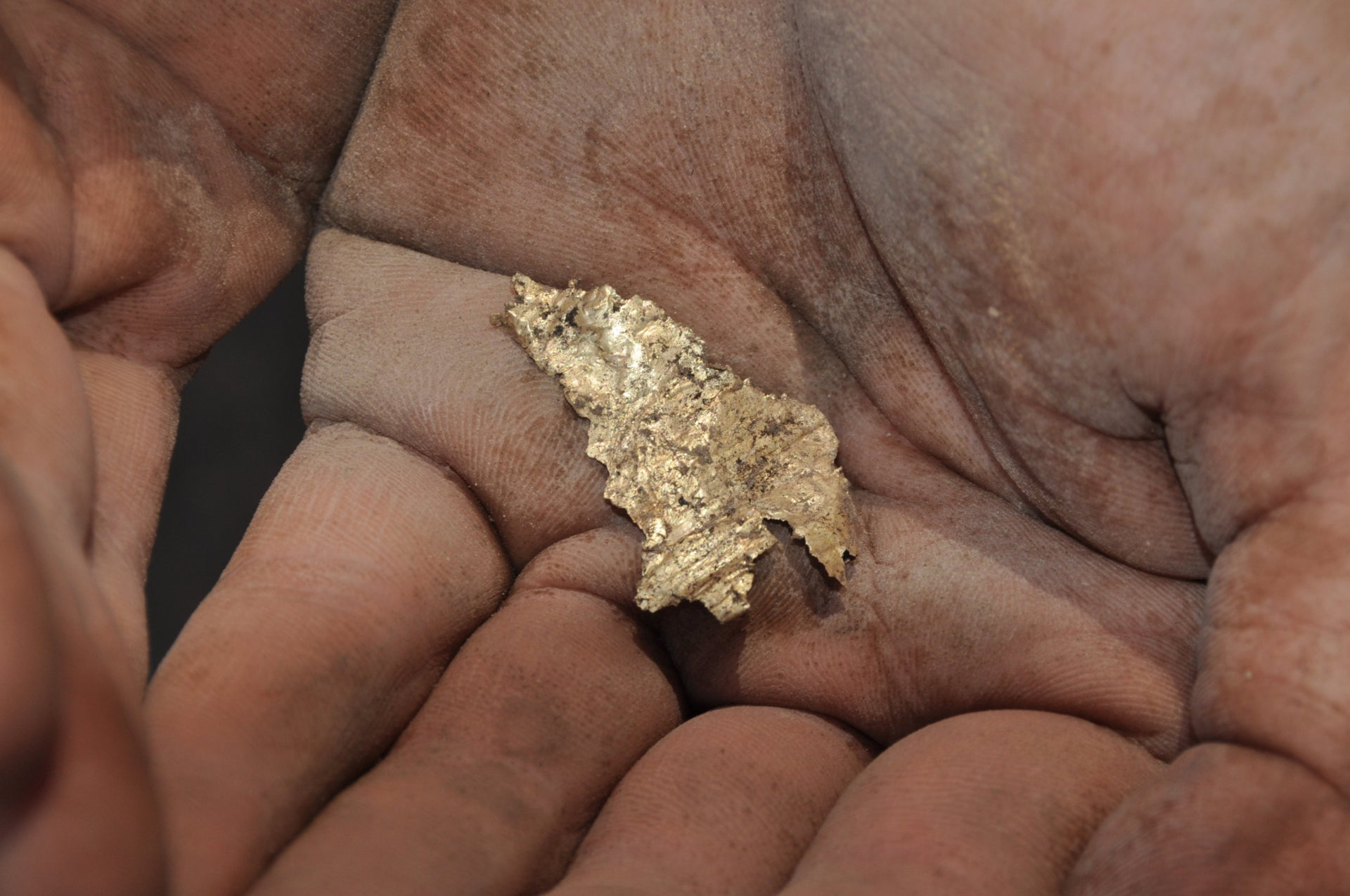 Gold leaf,Tel Lachish