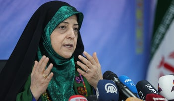 Vice President of Iran for Women and Family Affairs, Massoumeh Ebtekar, speaks to reporters during a press conference in the Islamic republic's capital Tehran, January 29, 2019.