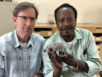 Prof. Michael Rogers, left, and Prof. Sileshi Semaw with the female cranium