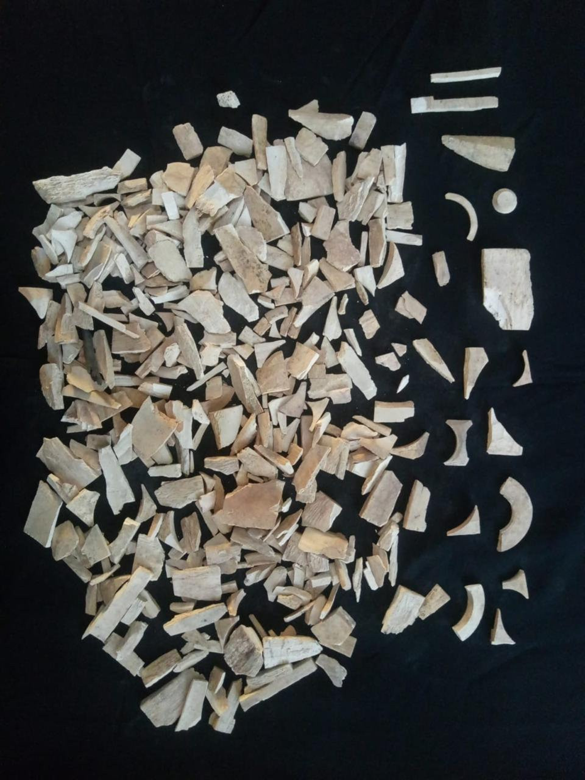 Fragments of ivory, evidence of a vast ivory industry in Islamic-period Bhanbhore