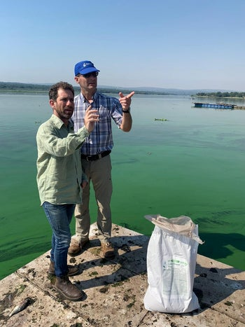 Moshe Harel, wearing hat, and Maayan Nave at the dam of heavily infected Roodeplaat Lake in South Africa: The green scum is an algae bloom