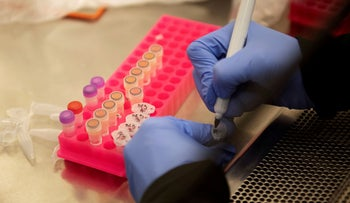 Researchers work with coronavirus samples as a trial begins to see whether hydroxychloroquine can prevent or reduce the severity of the coronavirus, Minnesota, March 19, 2020