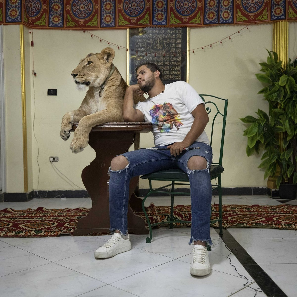 26-year-old lion tamer Ashraf el-Helw hugs his 5-year-old female African lion 'Joumana,' after performing a show, part of a coronavirus stay home and stay safe call to encourage people to stay home, inside his family apartment, in Cairo, Egypt, April 28, 2020.