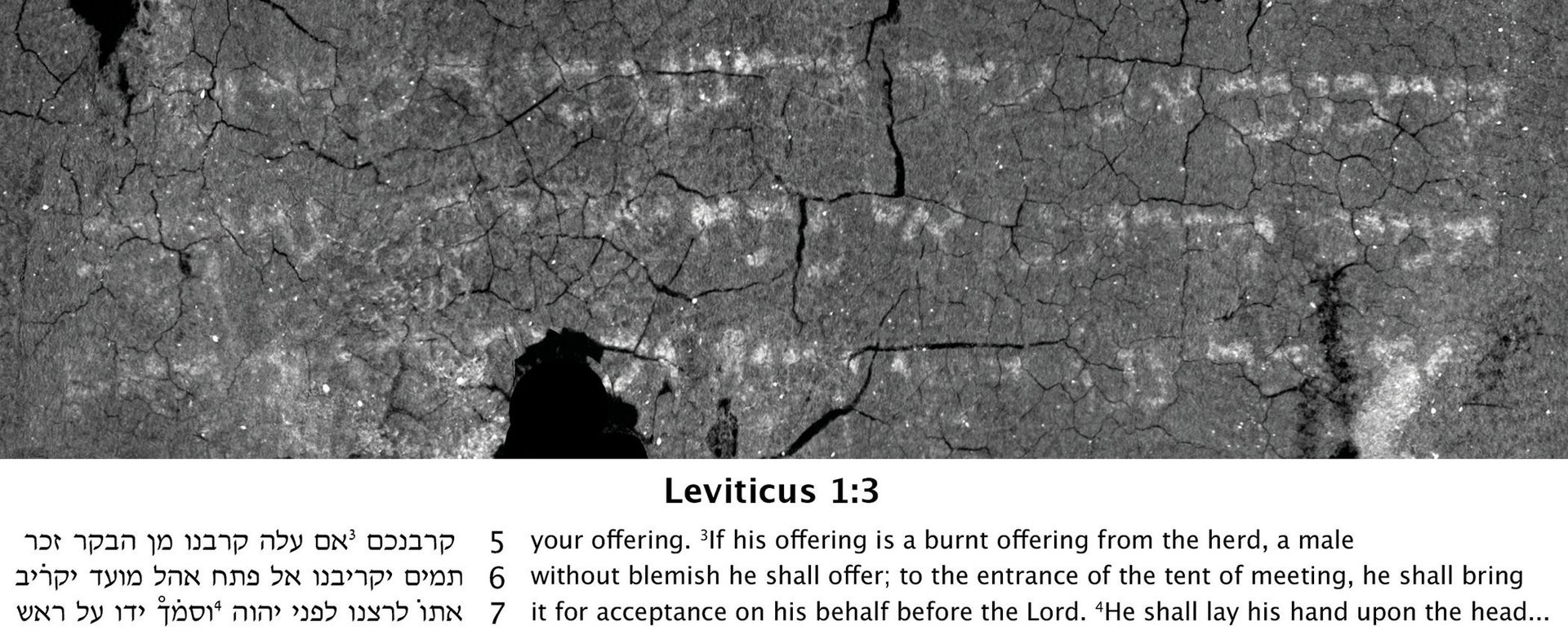 The virtually unwrapped Ein Gedi scroll containing the first two chapters of the Book of Leviticus