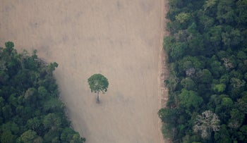 An aerial view shows a deforested plot of the Amazon near Porto Velho, Rondonia State, Brazil, August 21, 2019.