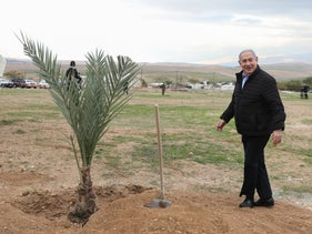 Israeli Prime Minister Benjamin Netanyahu poses during a tree planting ceremony in the Israeli settlment of Mevo'ot Yeriho in the West Bank's southern Jordan Valley.