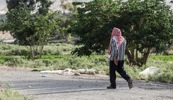 A Palestinian man is seen walking through the Jordan valley in the West Bank, June 6, 2020.
