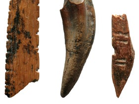 Tools made on bone and teeth were used to hunt small monkeys and squirrels, work skins or plants, and perhaps create nets at Fa-Hien Lena, Sri Lanka 48,000-years-ago. Here a possible net shuttle, monkey tooth awl/knife, and projectile point are shown