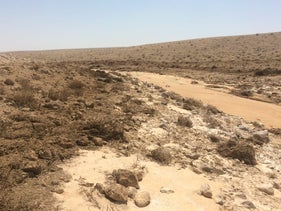 The Ashalim stream in southern Israel, June 22, 2020.