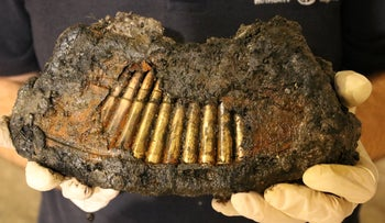 A full magazine of Bern machine gun found by archaeologists in Jerusalem.