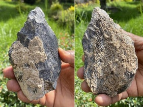 Surprisingly sophisticated 1.4 million-year-old bone hand axe found at Konso, southern Ethiopia